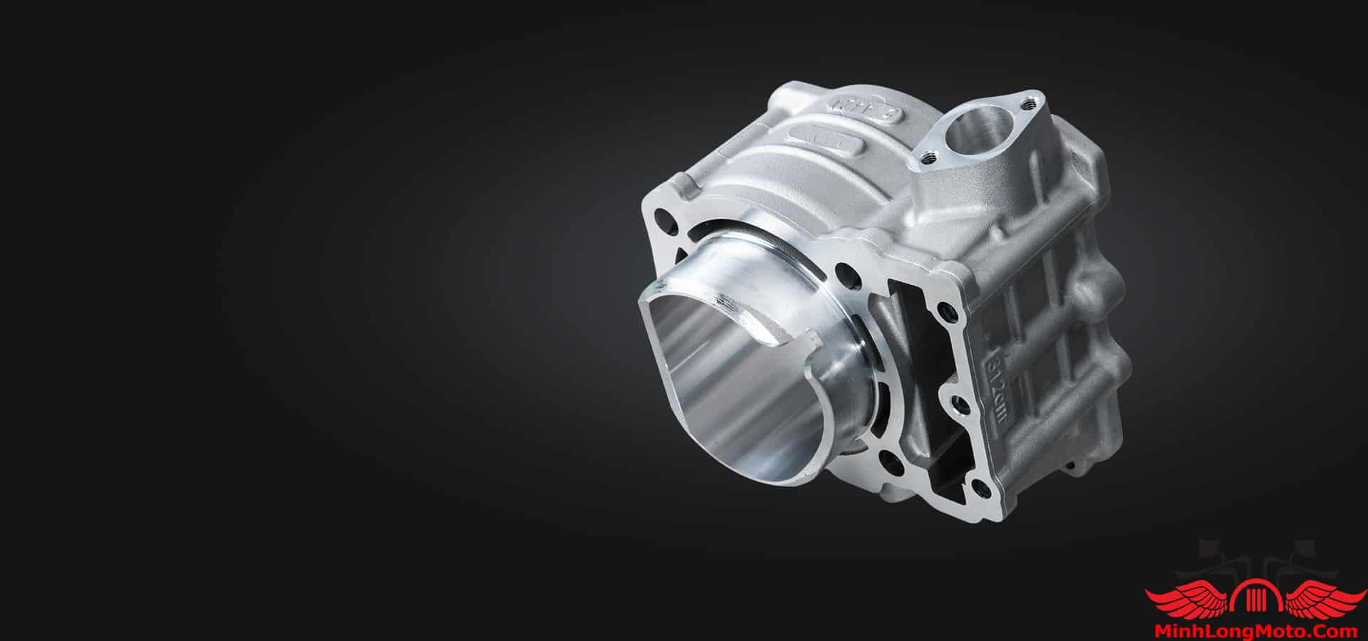 Động cơ xe Zontes 310R1